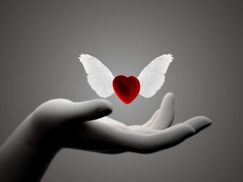 картинки сердце любящее