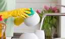 Are You Hosting Billions of Germs in Your House?